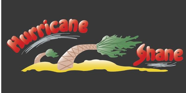 Hurricane Shane Logo